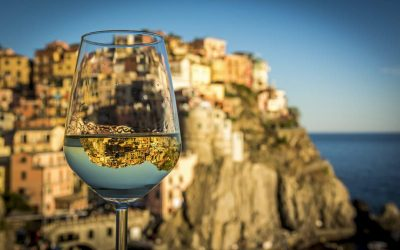 Italian wines: historic levels of growth